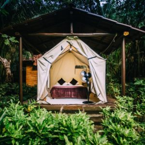 Platform Tent Single